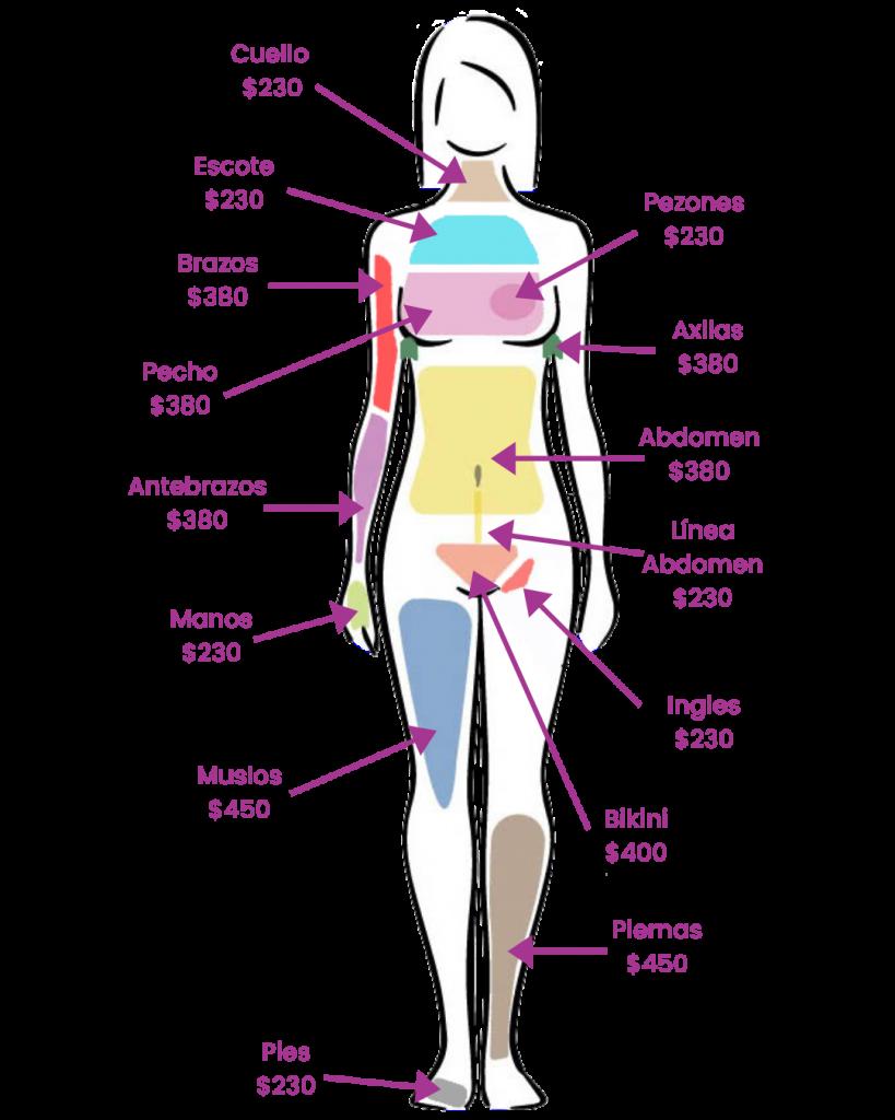 Costos de la depilación definitiva corporal frontal